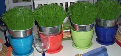 nonfloral grass wedding centerpieces