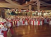 Inexpensive wedding venues in phoenix inexpensive wedding venue in phoenix junglespirit Choice Image